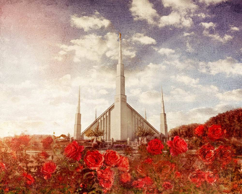 LDS art photo of the Boise Temple with red roses in the foreground.