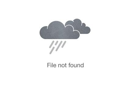 Ubud Art Village Tour