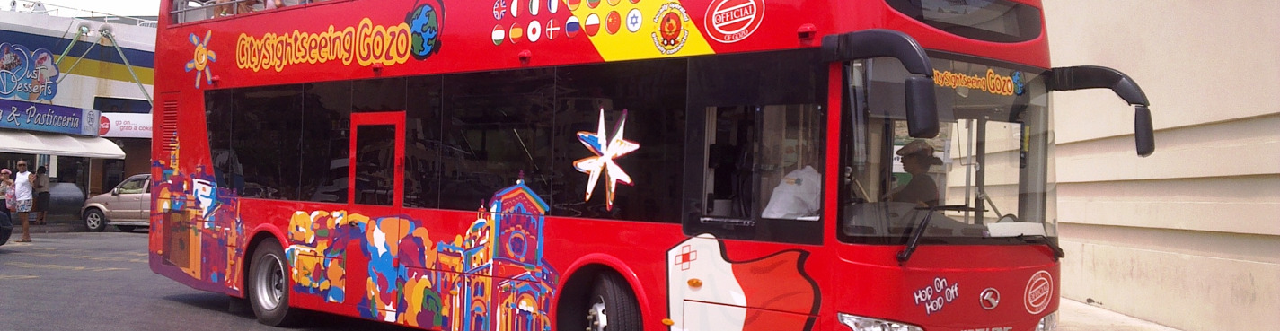 City sightseeing tours (2 day)
