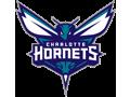 Hornet's Fan Buzz