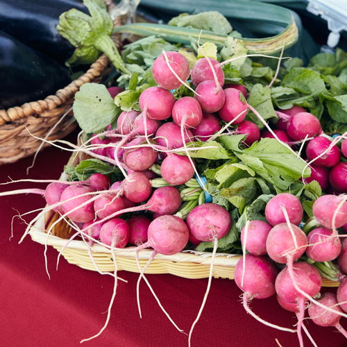 Picture of The Omaha Farmers Market is open every Sunday in Aksarben Village located in the heart of Omaha for the city's best selection of farm-fresh, local produce and more