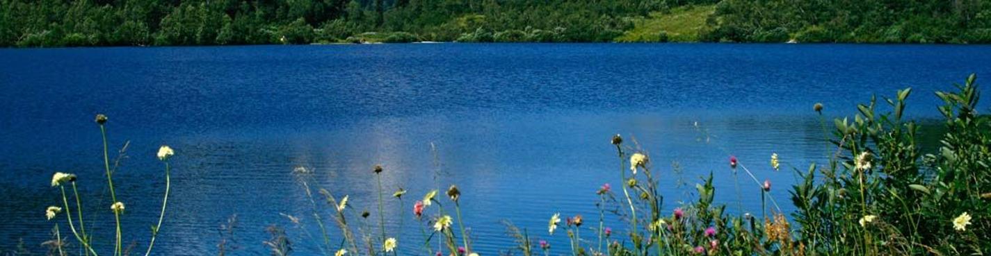 Озера любви или «Корыта»