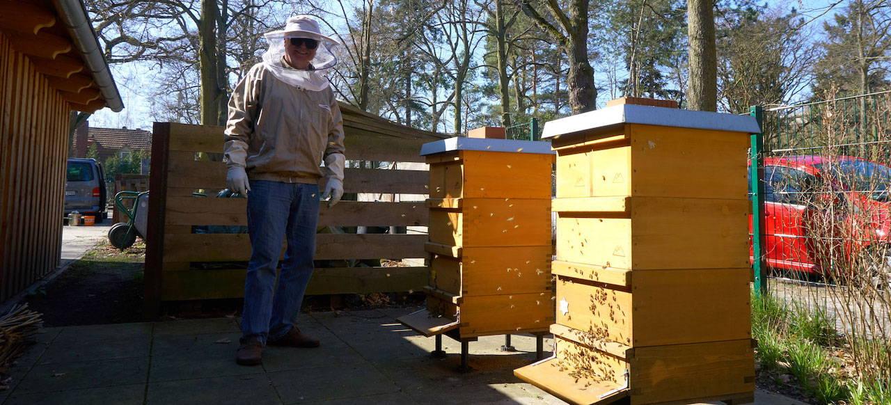 Die Bienenvölker im Nutzgarten der Liebermann-Villa am Wannsee