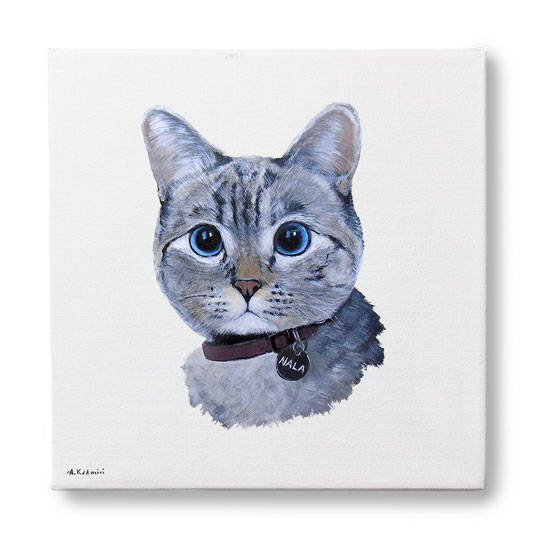 cat portrait - color styles