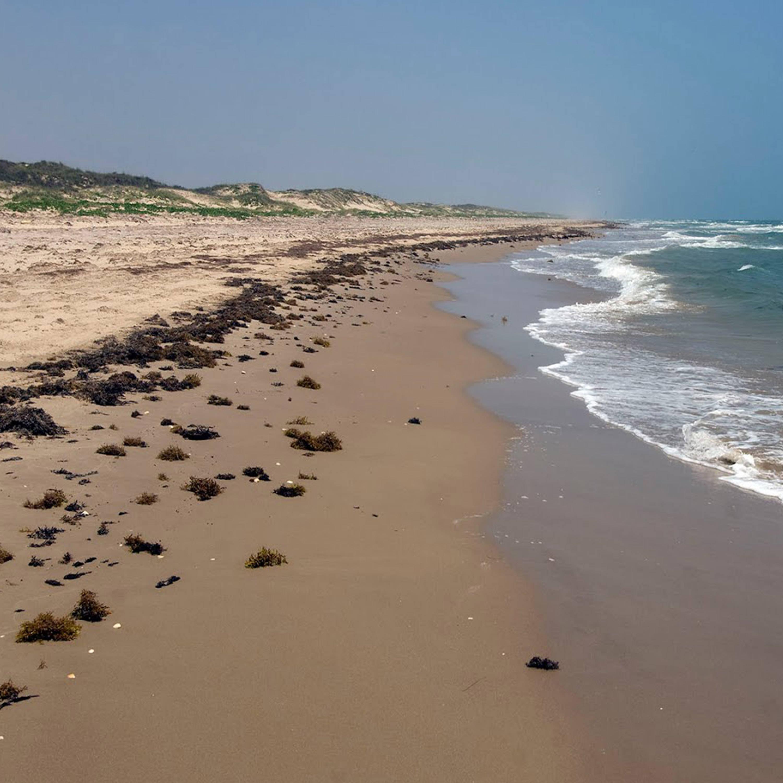 Padre Island National Seashore, Gulf Coast, Sea side Camping, Beach Walking, Star Gazing Spot