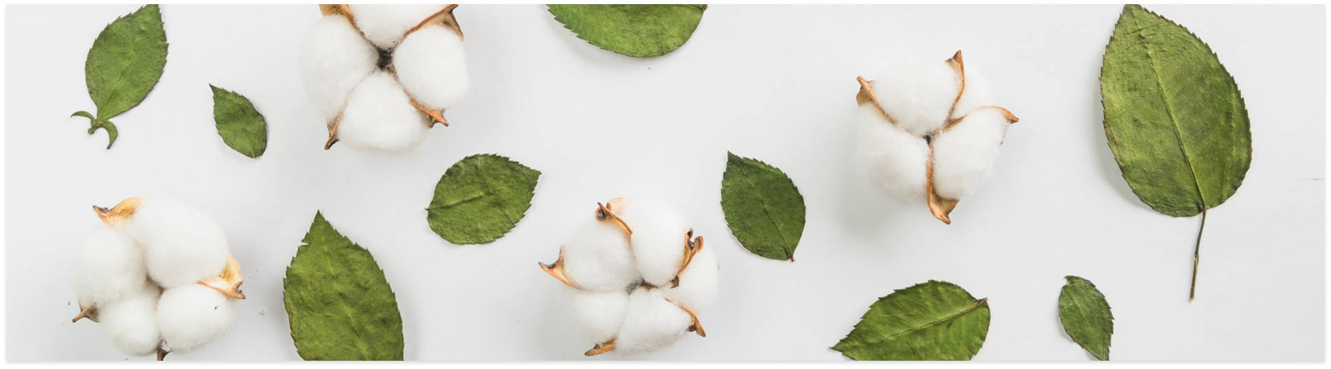 sleep zone bedding   website store products pages cottonnest cotton with leaves