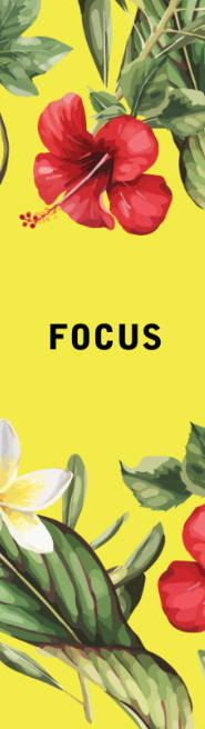 See our Focus Collection