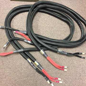 Statement Gold Speaker Cables