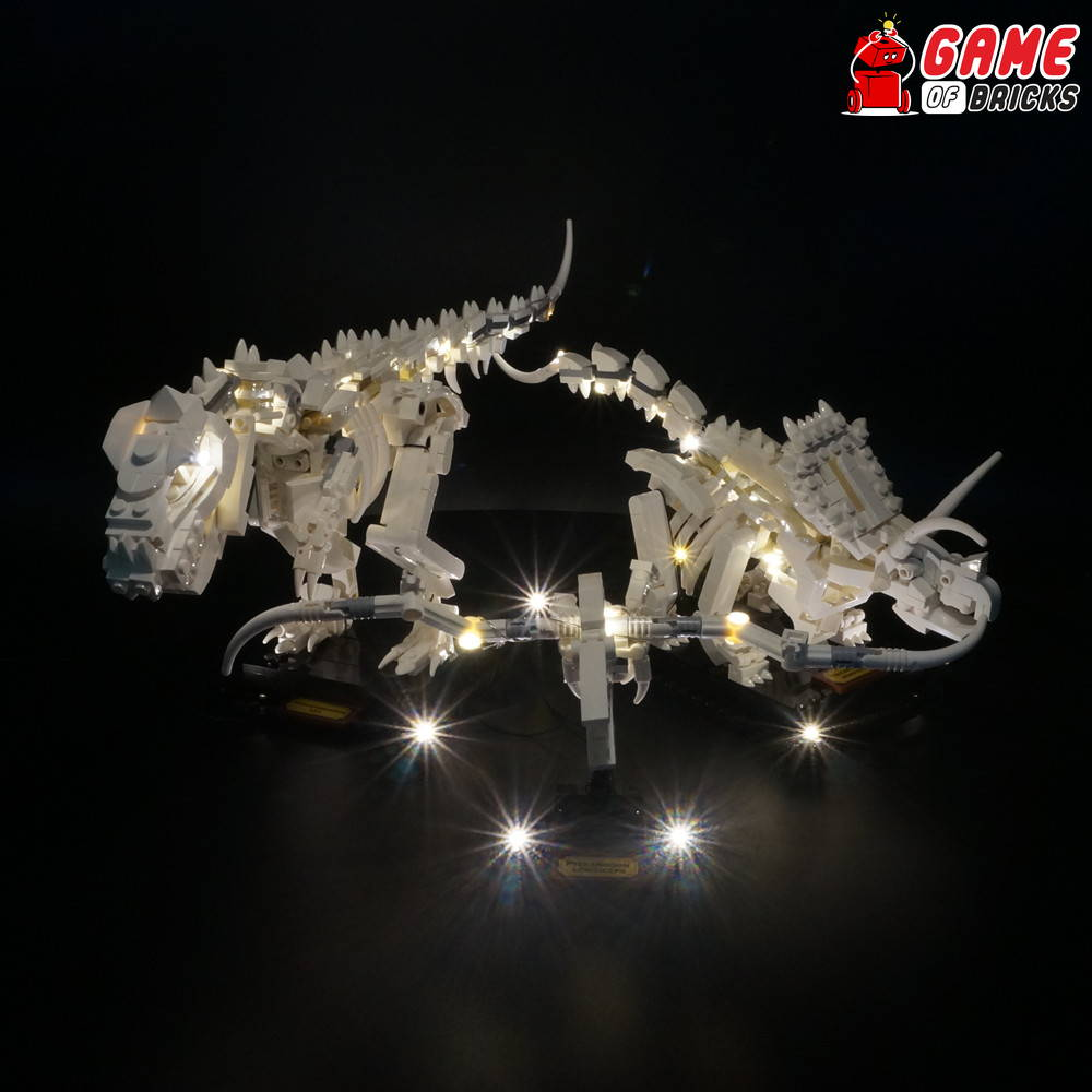 lego led lights for 21320 fossils