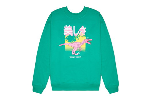 Свитшот динозавровый зеленый 美しさ