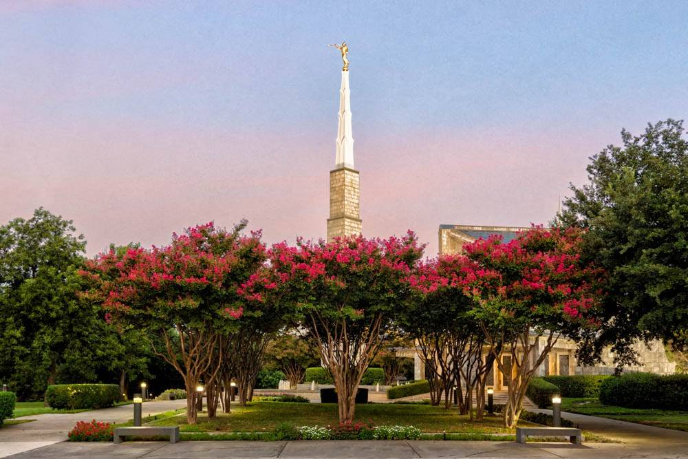 Dallas LDS Temple surrounded by blossoming trees.