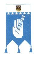 Iisalmen Invalidit ry, Iisalmi