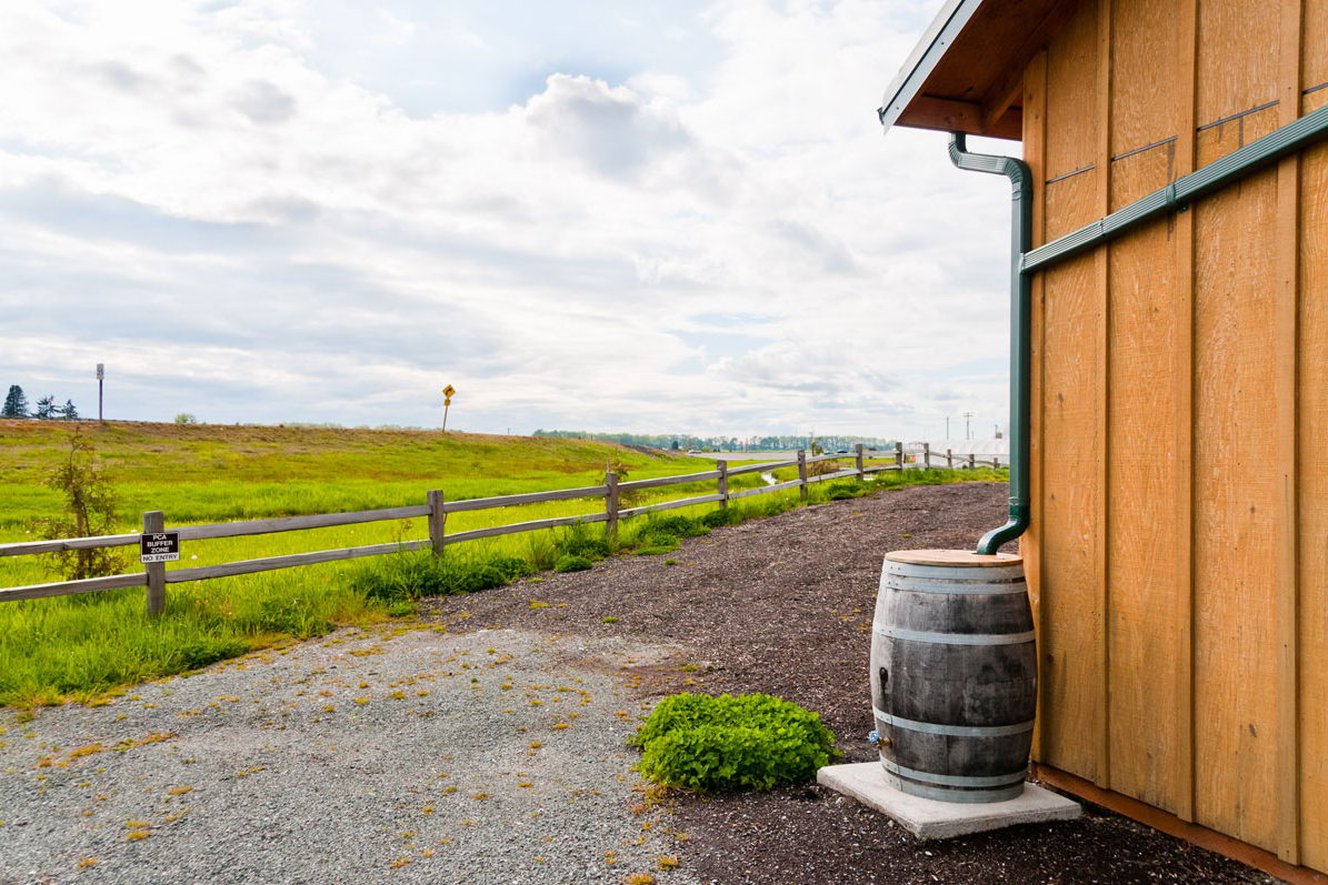 Collecting Rainwater at Home