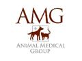 AMG Cat Basket
