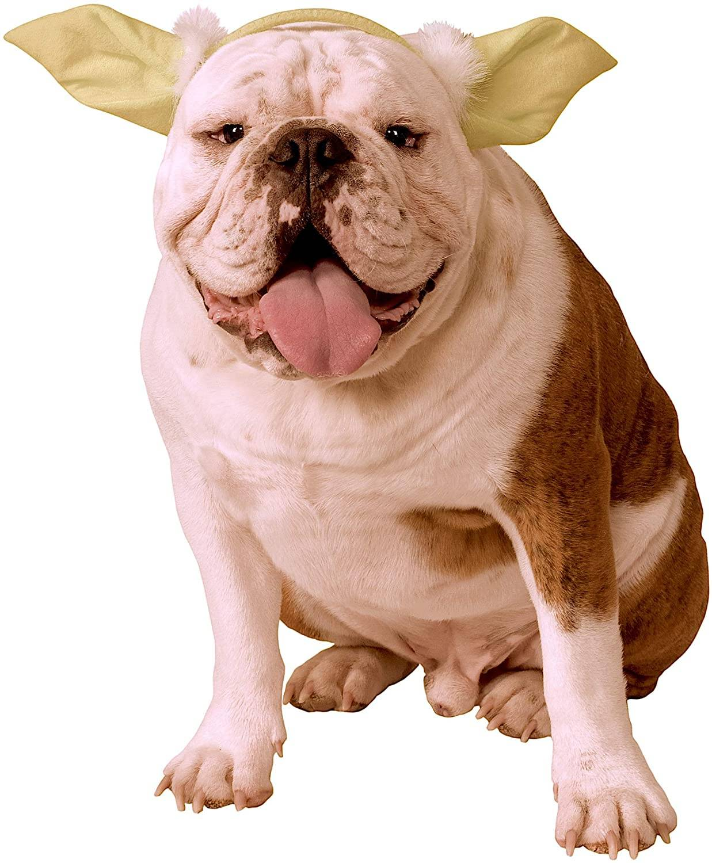 Dog Ears for Baby Yoda  Dog Ears for Baby Yoda  Dog Ears for Baby Yoda