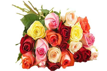 MIx roses bouquet.jpg
