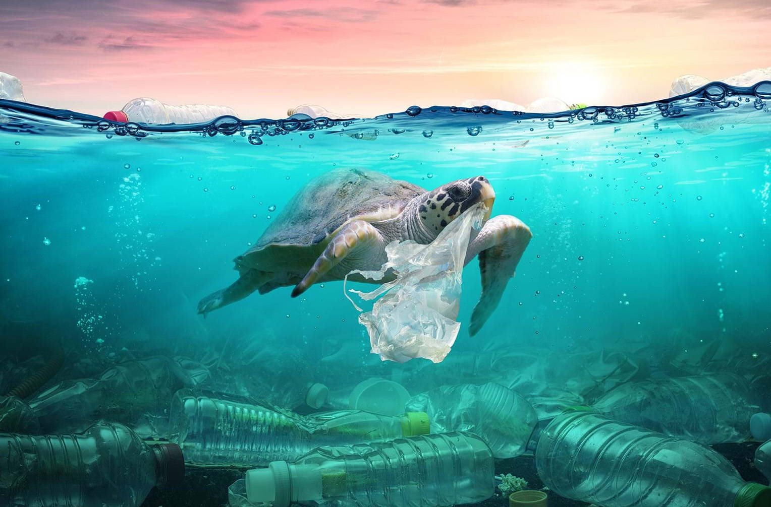 Every sale funds the collection of 12kg of ocean litter