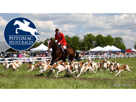 Exclusive Parking for the 65th Annual Potomac Hunt Races
