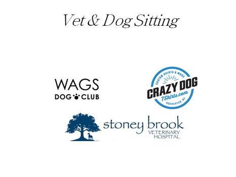 Vet & Dog sitting