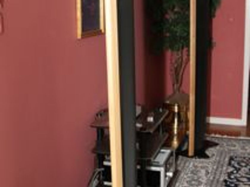 King Audio Prince 2 electrostatic speakers