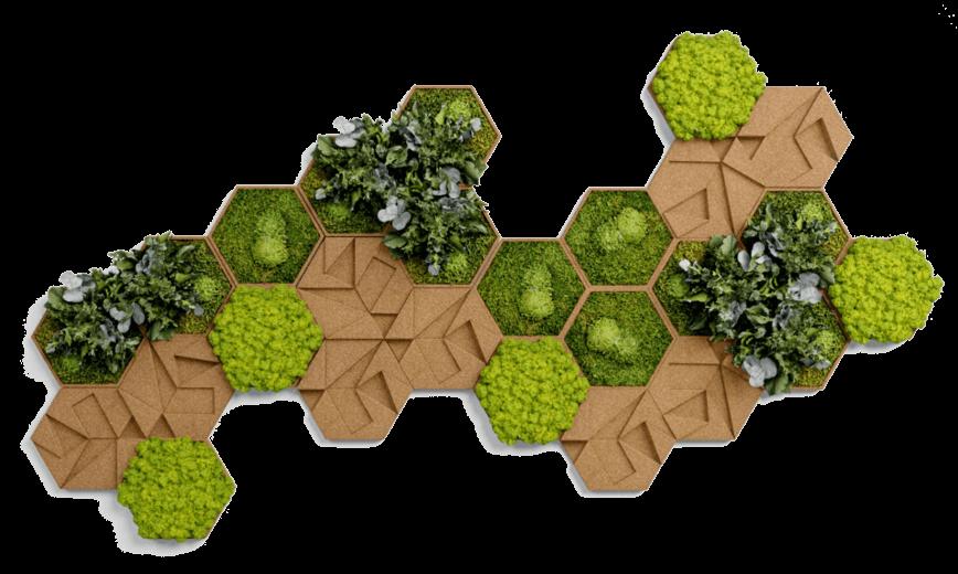Finestgreen Moosbilder Islandmoos Grüne Wände
