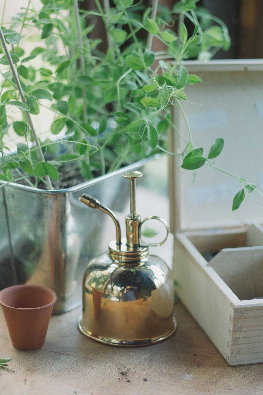 Thisispaper_Gardening_7.1.jpg