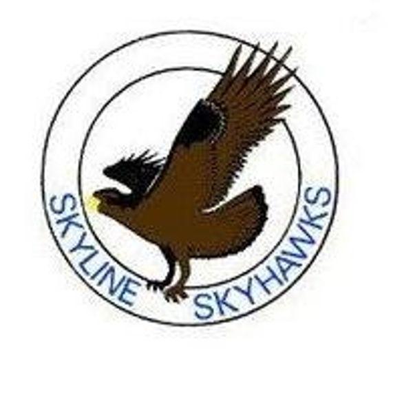 Skyline Elementary PTA