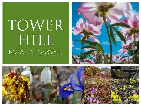 Tower Hill Botanic Garden in Worcester - Family Membership