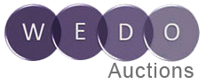 501 Auctions - Mobile Bidding and Charity Auctions