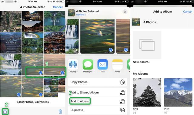 Sort iPhone Photos