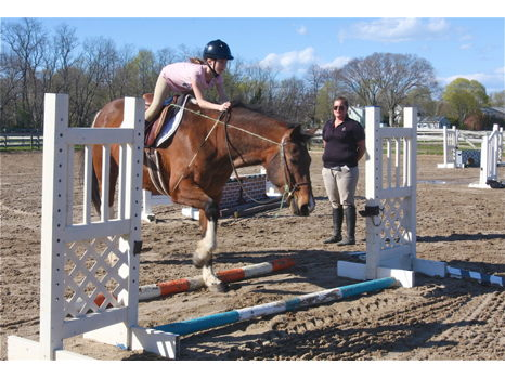 Five Horseback Riding Lessons