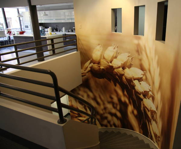 Interior Vinyl Wall Wrap -  Interior Design Wrap - Wheatfield Wall Wrap