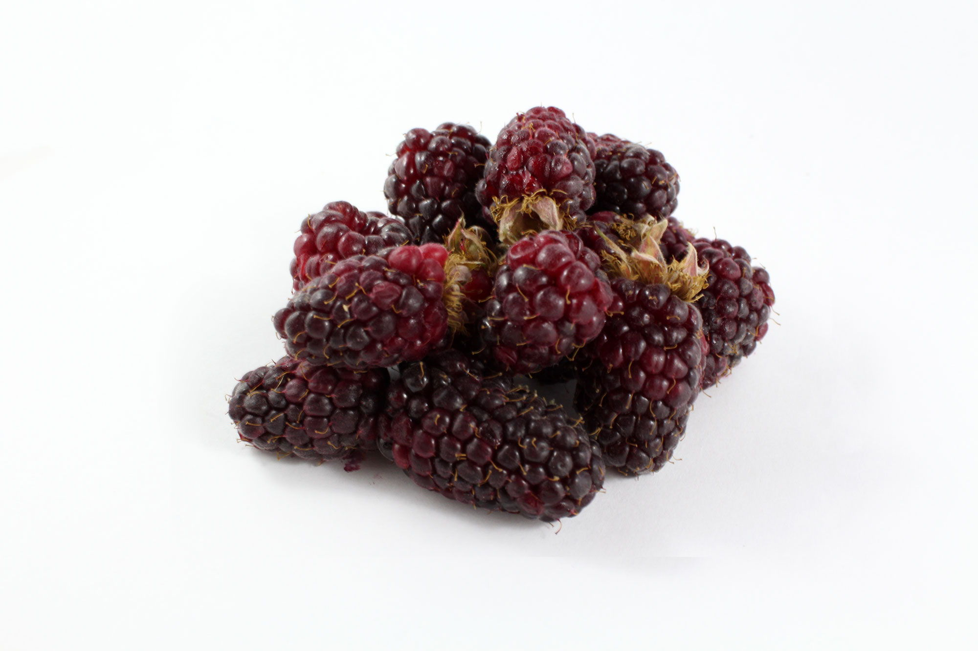 Tay Berries - Souto Farms Fresh BC Fruit