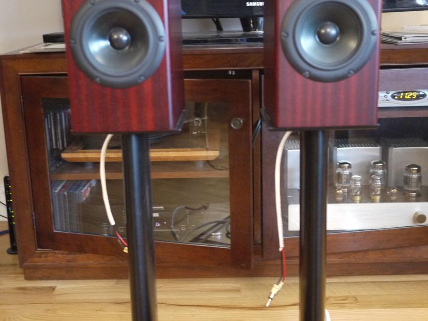 Totem Acoustic Rainmaker - Mahogany