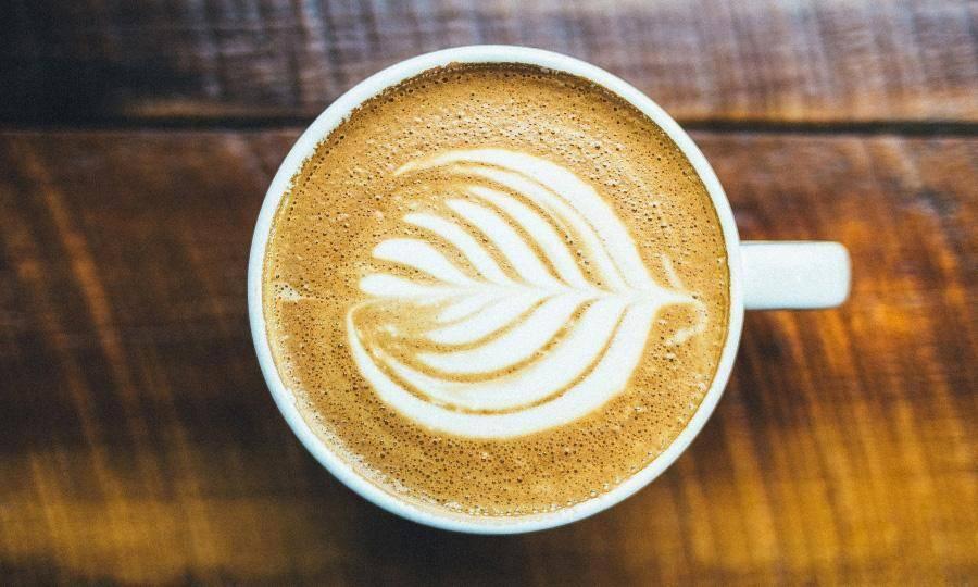 BeanBear Coffee