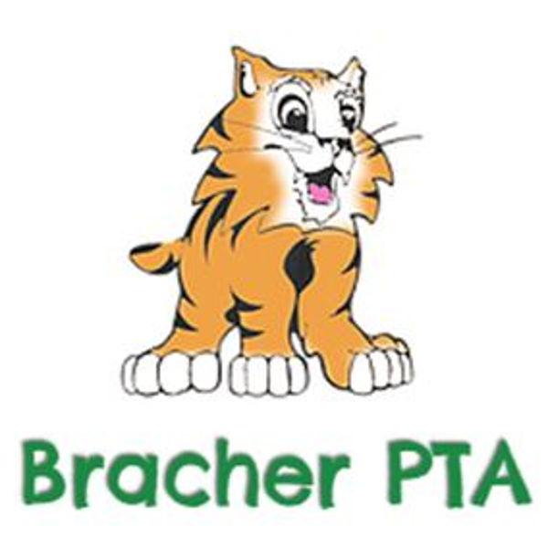 Bracher PTA